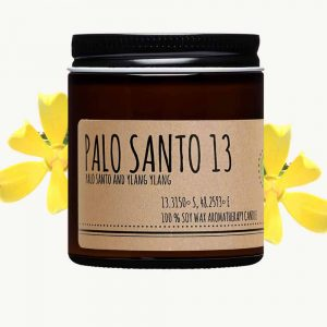 Palo santo and ylang ylang candle
